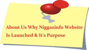 About Us Why Niggazinfo Website Is Launched & It's Purpose